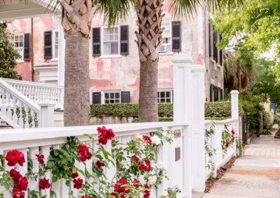 Charleston Roses