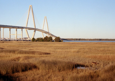 Coyote and Ravenel Bridge Steven Hyatt