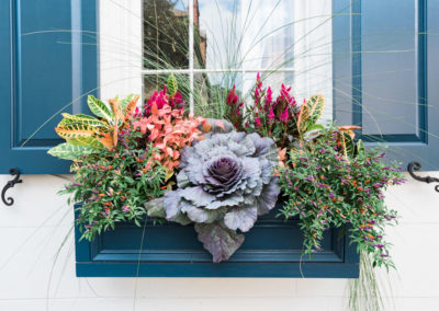 king-street-windowbox